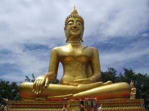 buddha contact us