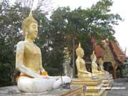На холме Большого Будды