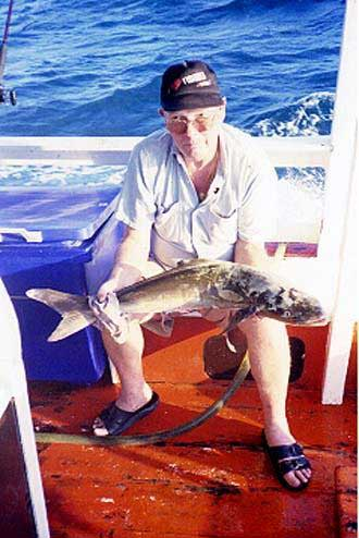 fishing in pattaya images cobia