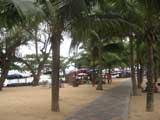 dongtan beach walkways