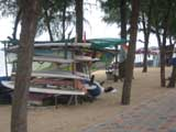 dongtan beach windsurfing
