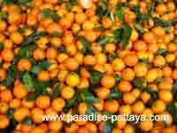 Апельсины для витамина C