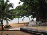 jomtien beach via palm trees