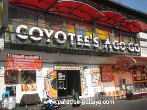pattaya nightlife coyotees