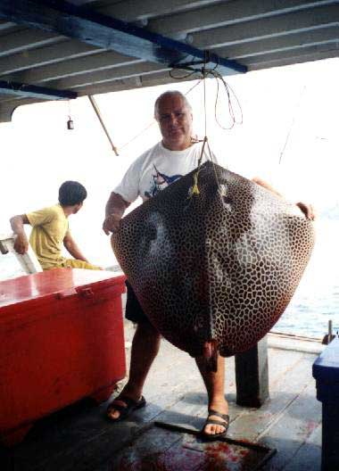fishing in pattaya images rays