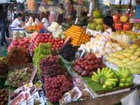 retire in thailand to fresh fruits