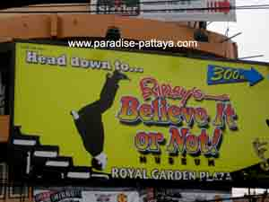 fun things to do pattaya
