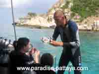 scuba diving careers and instruction
