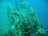 part of the wreck